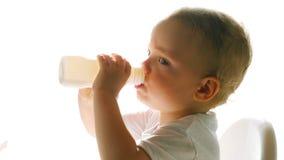 Πόσιμο γάλα αγοριών από το μπουκάλι στο άσπρο υπόβαθρο απόθεμα βίντεο