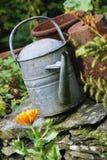 πότισμα κήπων Στοκ εικόνες με δικαίωμα ελεύθερης χρήσης