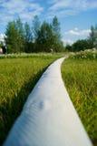 πότισμα μανικών Στοκ φωτογραφίες με δικαίωμα ελεύθερης χρήσης