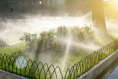 Πότισμα χορτοταπήτων Πότισμα των κρεβατιών λουλουδιών Στοκ φωτογραφίες με δικαίωμα ελεύθερης χρήσης