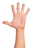 πόλεμος ατόμων χεριών πυγμών εγκιβωτισμού Στοκ Εικόνα