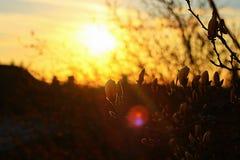 πόλη ηλιοβασιλέματος βουνών sim ural Στοκ Εικόνες