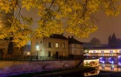 Πόλη νύχτας του Στρασβούργου, ο περίπατος στο κίτρινο φύλλωμα φθινοπώρου στα δέντρα Στοκ εικόνα με δικαίωμα ελεύθερης χρήσης