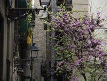 Πόλη της Βαρκελώνης Στοκ φωτογραφία με δικαίωμα ελεύθερης χρήσης