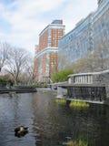 Πόλη της Νέας Υόρκης, πάρκο μπαταριών Στοκ εικόνα με δικαίωμα ελεύθερης χρήσης