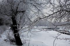 Πόλη τον Ιανουάριο Στοκ Εικόνες