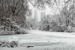 Πόλη Central Park της Νέας Υόρκης στη λίμνη χιονιού Στοκ φωτογραφία με δικαίωμα ελεύθερης χρήσης