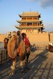 Πόλη JiaYuGuan με την καμήλα Στοκ Εικόνα