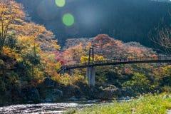 Πόλη Mitake και ποταμός Tama στην εποχή φθινοπώρου Στοκ φωτογραφία με δικαίωμα ελεύθερης χρήσης