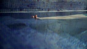 πόδια γυναικών αργά που βγαίνουν από το νερό και την άσκηση απόθεμα βίντεο