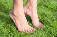 Πόδια γυναικών πέρα από την πράσινη χλόη Στοκ Εικόνες