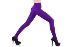 Πόδια γυναικών τις μακριές γυναικείες κάλτσες που απομονώνονται που φορούν Στοκ φωτογραφία με δικαίωμα ελεύθερης χρήσης