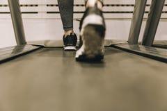 Πόδια γυναικών ` s περπατώντας στο threadmill στη γυμναστική Στοκ φωτογραφίες με δικαίωμα ελεύθερης χρήσης