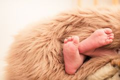 Πόδια ενός νεογέννητου μωρού Στοκ φωτογραφία με δικαίωμα ελεύθερης χρήσης