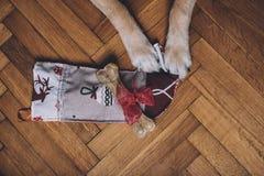 Πόδια και κάλτσα Χριστουγέννων Στοκ φωτογραφία με δικαίωμα ελεύθερης χρήσης