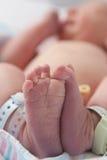 Πόδια μωρών: Νεογέννητος Στοκ εικόνες με δικαίωμα ελεύθερης χρήσης