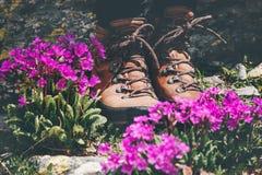 Πόδια που πραγματοποιούν οδοιπορικό τις μπότες στη ρόδινη κοιλάδα λουλουδιών Στοκ Εικόνες