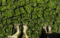 Πόδια που στέκονται στο ραγισμένο έδαφος Στοκ φωτογραφίες με δικαίωμα ελεύθερης χρήσης