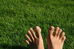 πόδια σειράς χλόης Στοκ Φωτογραφία