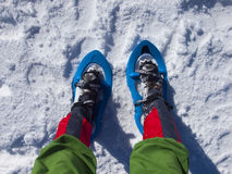 Πόδια στα πλέγματα σχήματος ρακέτας Στοκ εικόνα με δικαίωμα ελεύθερης χρήσης