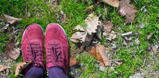 Πόδια στην πράσινη χλόη Στοκ Εικόνες
