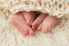 Πόδια των νεογέννητων διδύμων μωρών Στοκ φωτογραφία με δικαίωμα ελεύθερης χρήσης