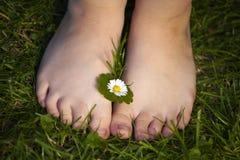 Πόδια Childs με το λουλούδι Στοκ Φωτογραφία