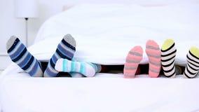 Πόδια Familys στις κάλτσες stripey που κλωτσούν κάτω από τις καλύψεις απόθεμα βίντεο