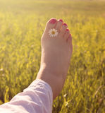 Πόδι γυναικών Στοκ Εικόνες