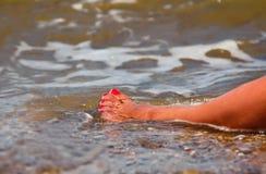 Πόδι θάλασσας Στοκ φωτογραφία με δικαίωμα ελεύθερης χρήσης