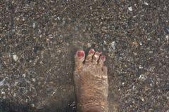 Πόδι σε ένα νερό Στοκ Εικόνες
