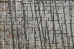 Πόλοι μπαμπού πριν από έναν τοίχο Στοκ εικόνες με δικαίωμα ελεύθερης χρήσης