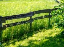 Πύλη σε ένα λιβάδι με τα άλογα Στοκ Φωτογραφίες