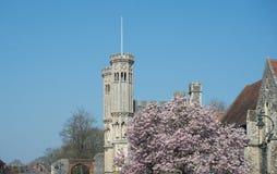 Πανεπιστήμιο εκκλησιών του Καντέρμπουρυ Χριστός στοκ φωτογραφία με δικαίωμα ελεύθερης χρήσης