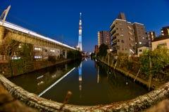 Πύργος δέντρων ουρανού του Τόκιο στην Ιαπωνία Στοκ εικόνα με δικαίωμα ελεύθερης χρήσης