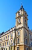 Πύργος αιθουσών πόλεων του Cluj Napoca Στοκ Εικόνα