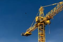 Πύργος γερανών κατασκευής και πετώντας πουλί στο υπόβαθρο του μπλε Στοκ Εικόνα