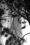 Πύργος εμπορικών κέντρων του Βανκούβερ Στοκ φωτογραφία με δικαίωμα ελεύθερης χρήσης