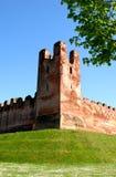 Πύργος επάνω από τους αρχαίους τοίχους με τον τάπητα των μαργαριτών Στοκ Εικόνες