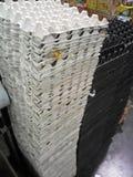 Πύργος κιβωτίων αυγών συμπαθητικός στοκ εικόνα