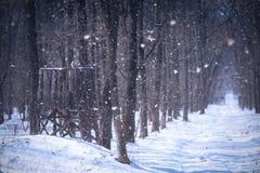 Πύργος κυνηγιού στο χειμερινό δάσος Στοκ Φωτογραφίες