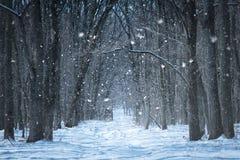 Πύργος κυνηγιού στο χειμερινό δάσος Στοκ εικόνες με δικαίωμα ελεύθερης χρήσης