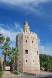 Πύργος μάγου Στοκ Φωτογραφίες