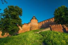 Πύργος ρολογιών και τοίχος του Κρεμλίνου Στοκ εικόνες με δικαίωμα ελεύθερης χρήσης