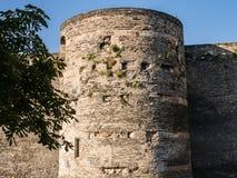 Πύργος στο πύργο της Angers με την ανάπτυξη φυλλώματος από τις πέτρες, FR Στοκ Εικόνα
