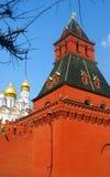 Πύργος της Μόσχας Κρεμλίνο και εκκλησία του αρχαγγέλου Κορμοί δέντρων Στοκ Φωτογραφία
