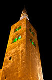πύργος της Συρίας μουσο στοκ φωτογραφία με δικαίωμα ελεύθερης χρήσης