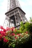 Πύργος του Άιφελ στο Παρίσι στο υπόβαθρο ενός όμορφου ροδαλού θάμνου στοκ εικόνα με δικαίωμα ελεύθερης χρήσης