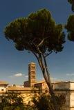 Πύργος του μουσείου Antiquarium, Ρώμη Στοκ Εικόνες