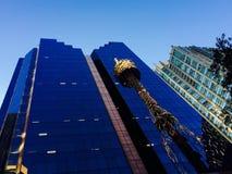 Πύργος του Σίδνεϊ Στοκ εικόνα με δικαίωμα ελεύθερης χρήσης